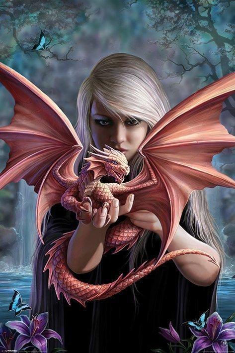 Anne Stokes - Dragon