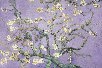Vincent Van Gogh - Purple Blossom