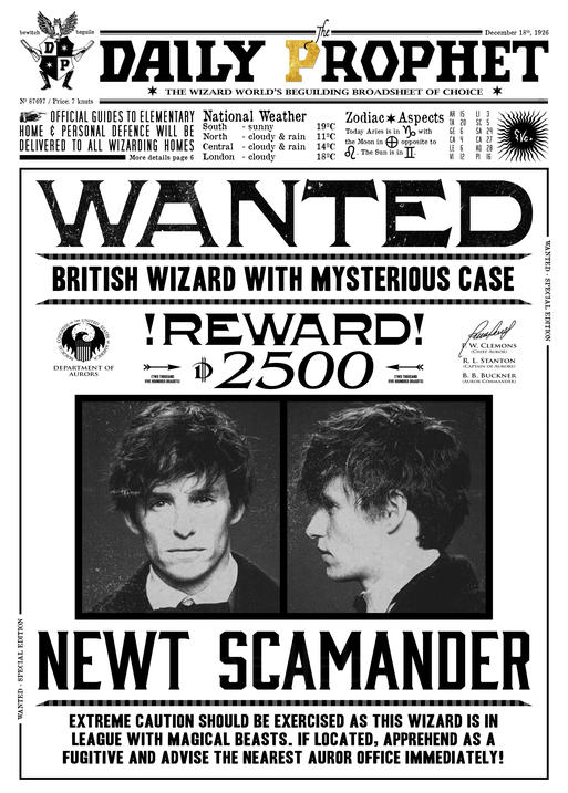 Pergament - Harry Potter - Daily Prophet - Wanted Newt Scamander
