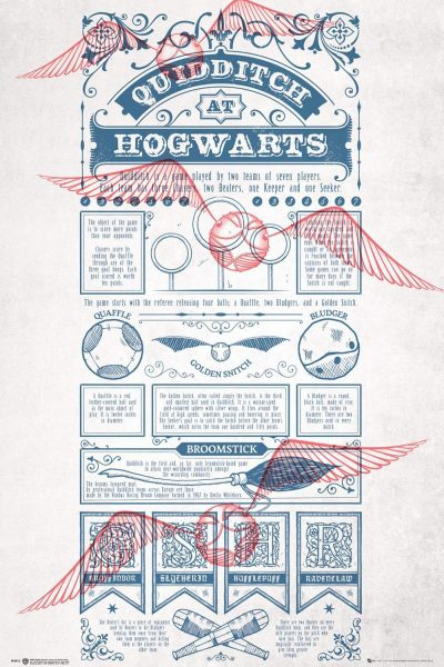 Harry Potter - Quidditch At Hogwarts