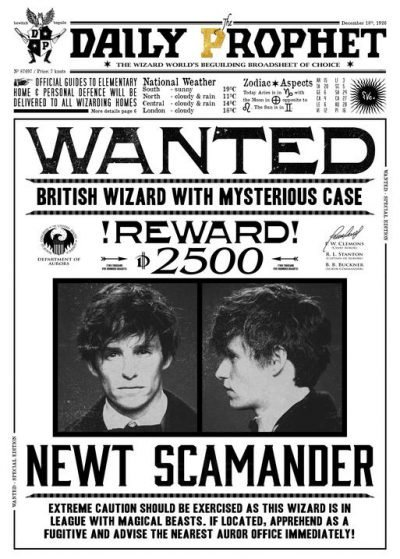A3 Print - Harry Potter - Daily Prophet - Wanted Newt Scamander