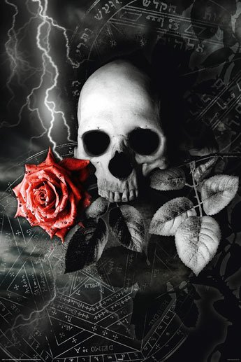 Red Gothic Rose With Skull