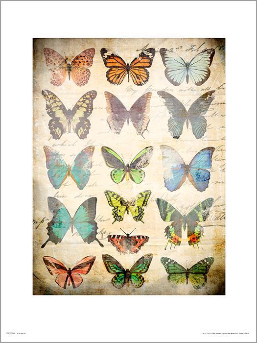 Exklusivt Art Print - Butterflies Vintage - Fjärilar