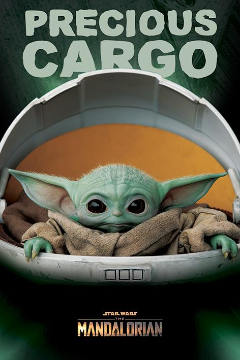 Star Wars - The Mandalorian (Precious Cargo)