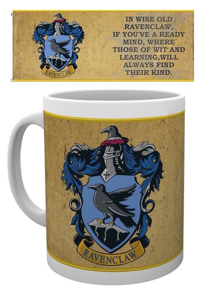 Harry Potter - Ravenclaw Characteristics - Mugg