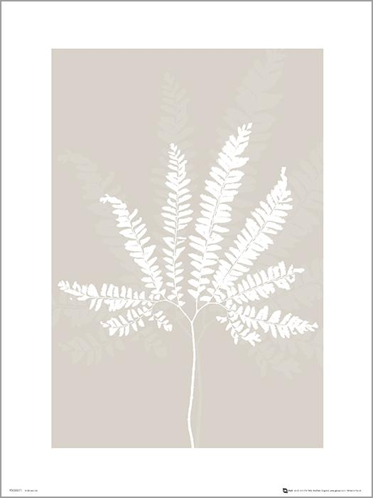 Exklusivt Art Print - Pressed leaf cream - Pressat blad, beige