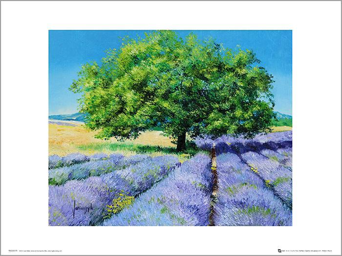 Exklusivt Art Print - Jean-Marc Janiaczyk - Tree and Lavenders