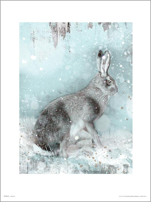 Exklusivt Art Print - Hare in Winter - Hare i vinterlandskap