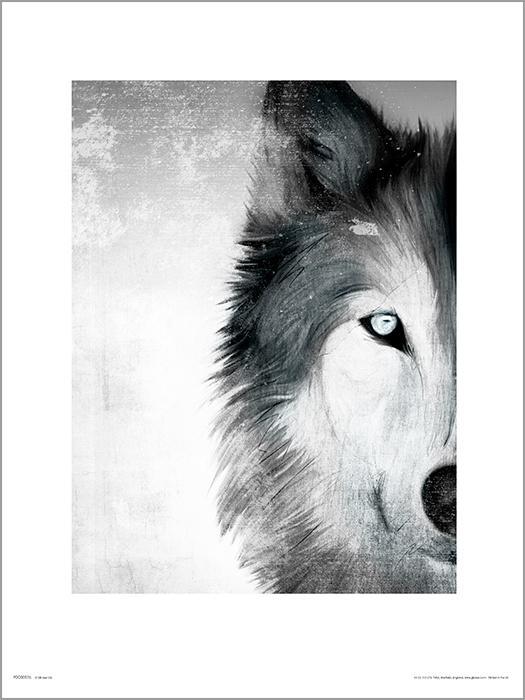 Exklusivt Art Print - Wolf paint - Varg i svart/vitt
