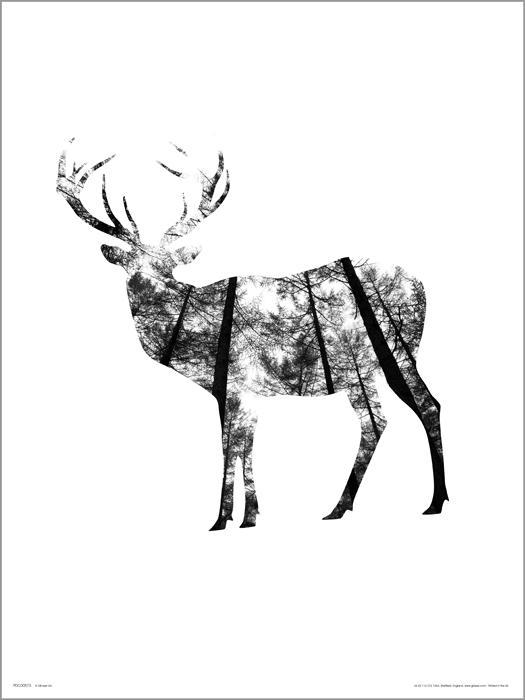 Exklusivt Art Print - Deer Woods