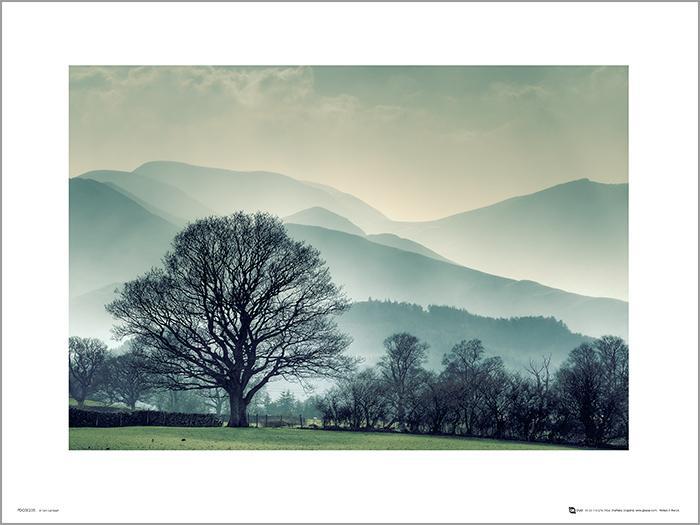 Exklusivt Art Print - Winter Tree Landscape