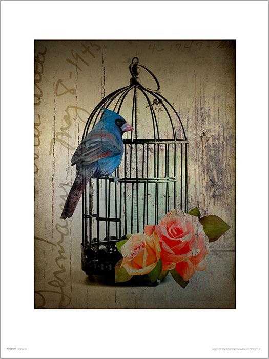 Exklusivt Art Print - Birdcage Vintage - Fågelbur