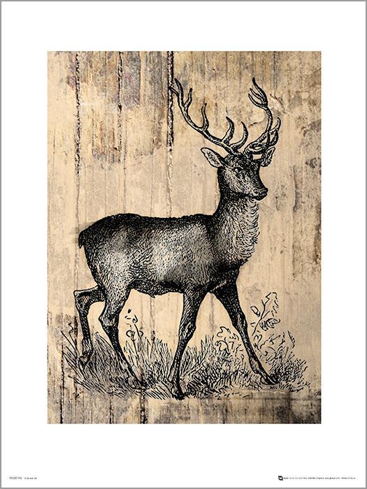 Exklusivt Art Print - Deer Sketch