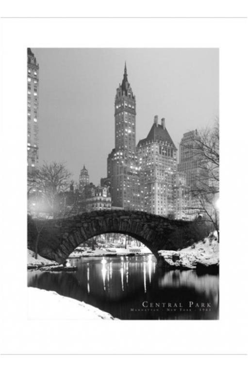 Poster - Central Park 1961 B/W