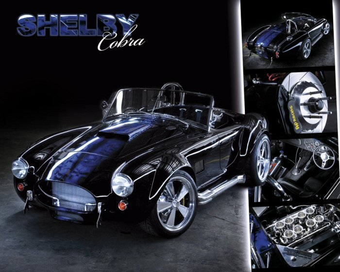 Easton - Shelby Cobra