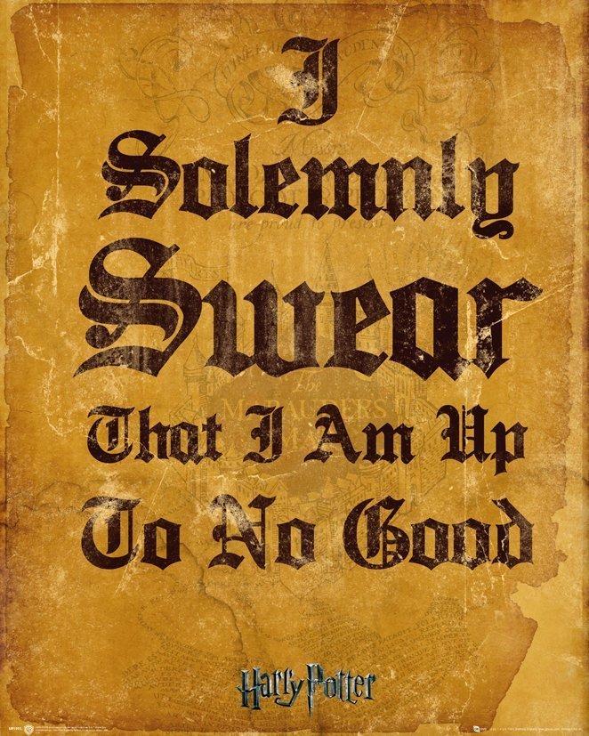 Harry Potter - I Solemnly Swear I Am Up To No Good