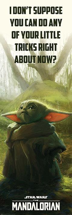 Star Wars: The Mandalorian (Special Tricks)