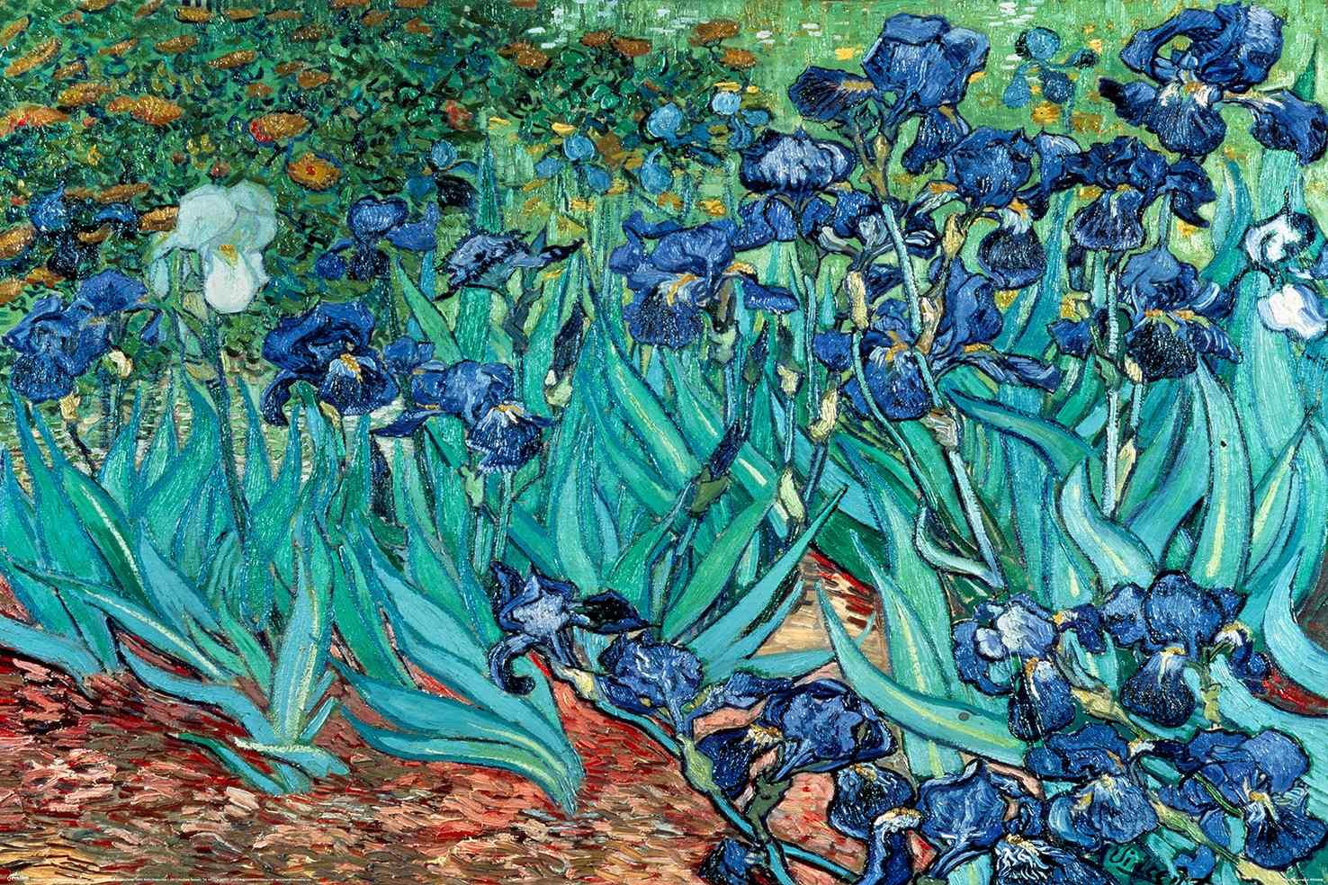 Van Gogh (Les Irises)
