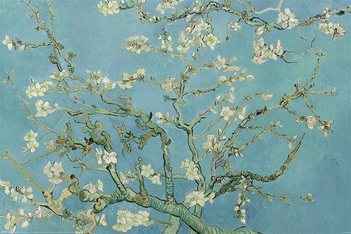 Van Gogh (Almond Blossom)